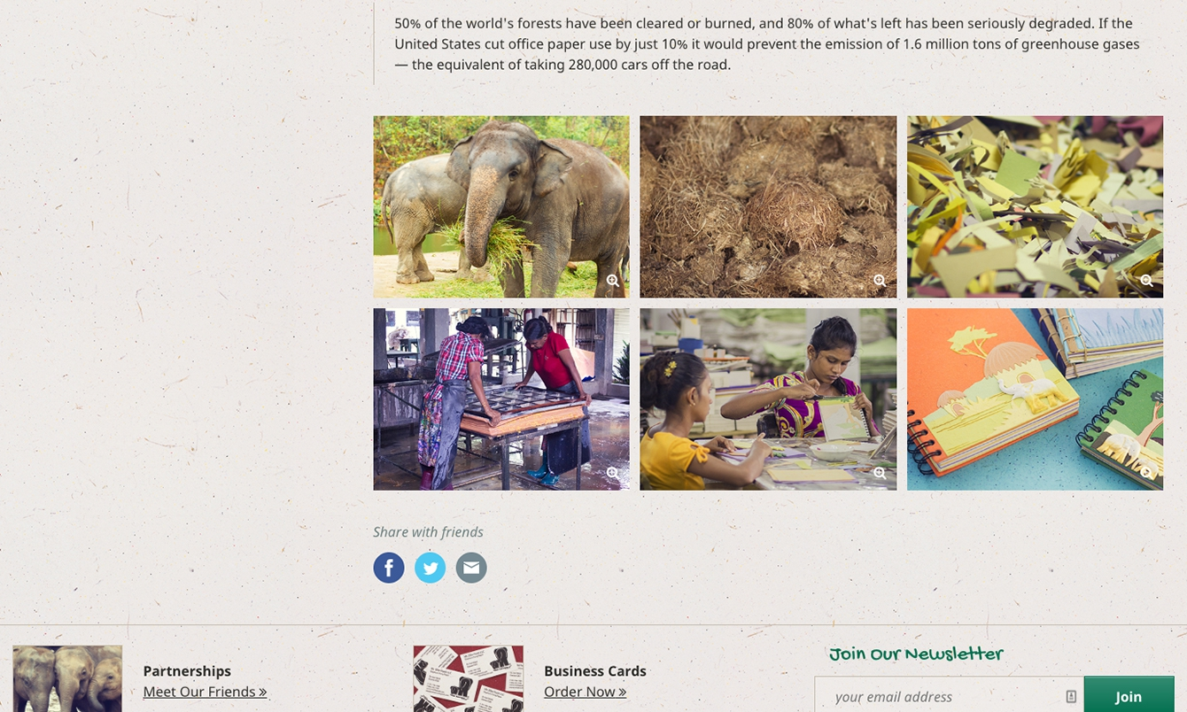 <p>Galleries help customers fully understand how Mr. Ellie Pooh products are made.</p>